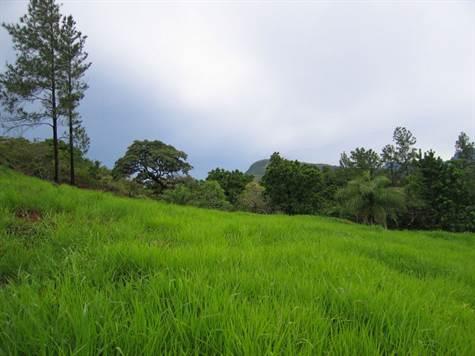 Santa-Fe-property-veraguasrealty20116812-6.jpg
