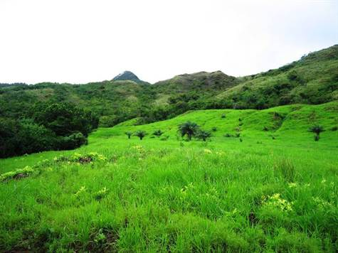 Santa-Fe-property-veraguasrealty20116812-9.jpg