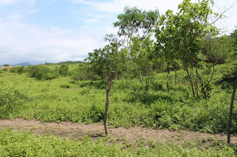 Dos-Mangas-Ecuador-property-LL1500414-3.jpg