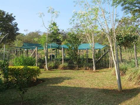 Santa-Fe-Panama-property-veraguasrealty182659880-8.jpg