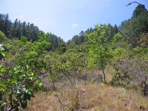 Santa-Fe-Panama-property-veraguasrealty20116888-2.jpg