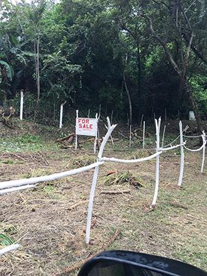 Roatan-Honduras-property-roatanlife965-2.jpg