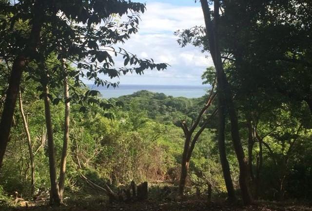 Roatan-Honduras-property-roatanlife988.jpg