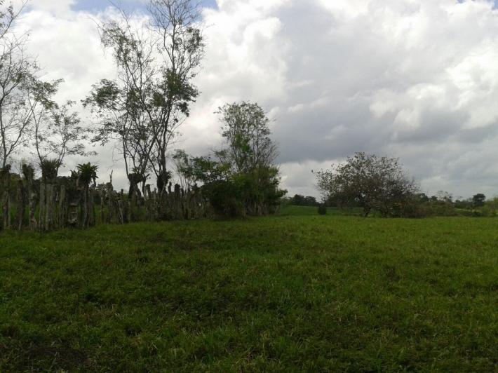 Volcan-Panama-property-panamarealtor5458-1.jpg