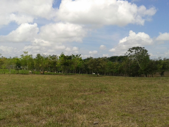 Volcan-Panama-property-panamarealtor5458-4.jpg