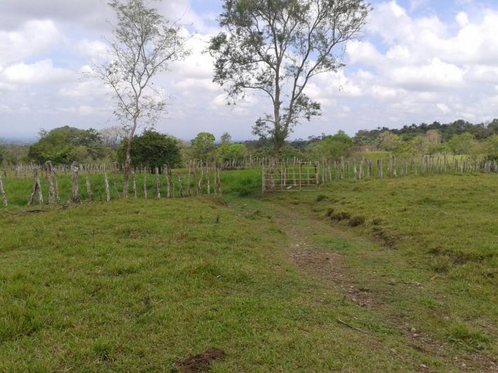 Volcan-Panama-property-panamarealtor5458-6.jpg