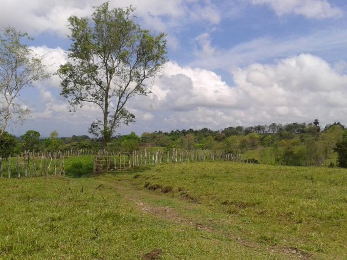 Volcan-Panama-property-panamarealtor5458.jpg