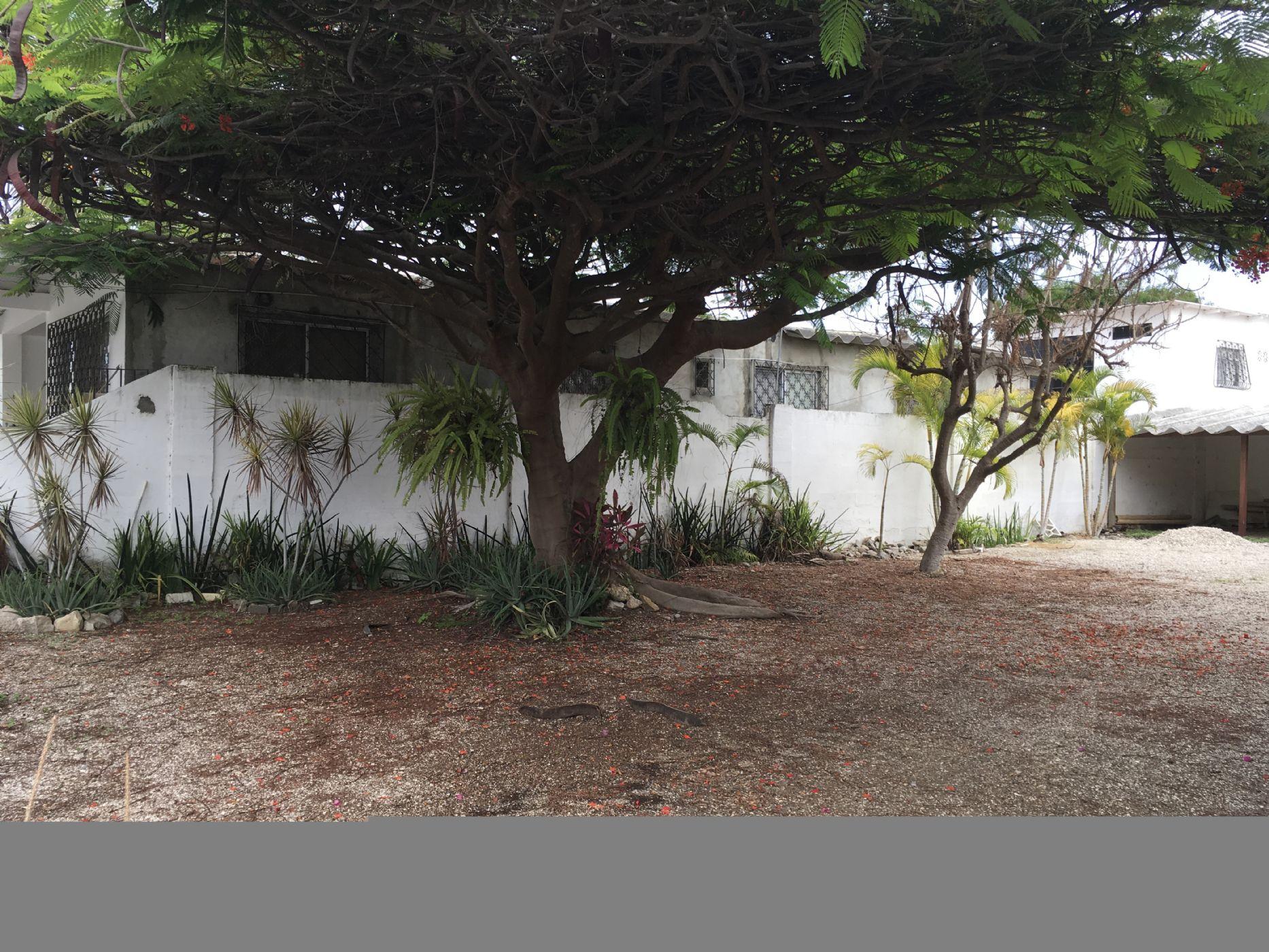 Salinas-Ecuador-property-500238-2.JPG