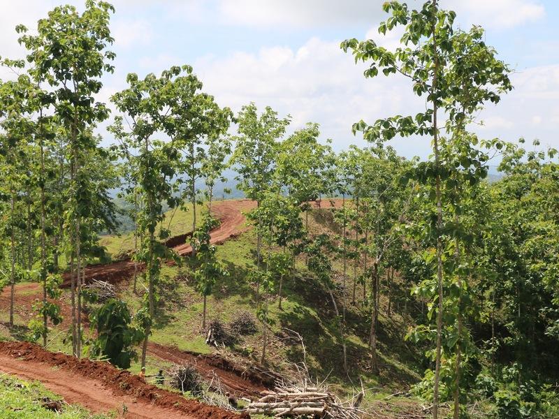 Costa-Rica-Costa-Rica-property-PROP-48148-10.jpg