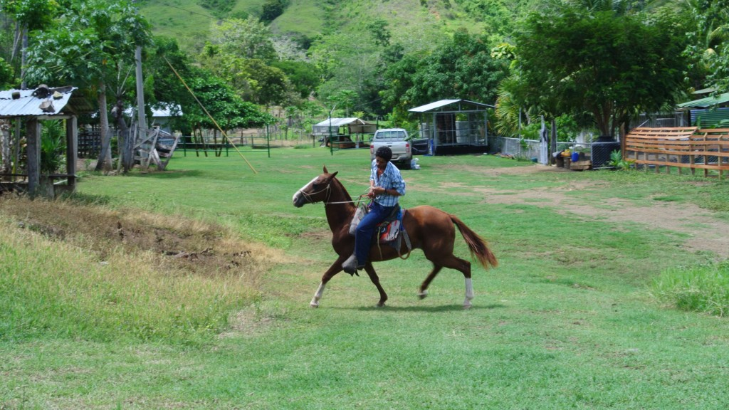 Osa-Peninsula-Costa-Rica-property-costaricarealestateservicePROP-25368-2.jpg