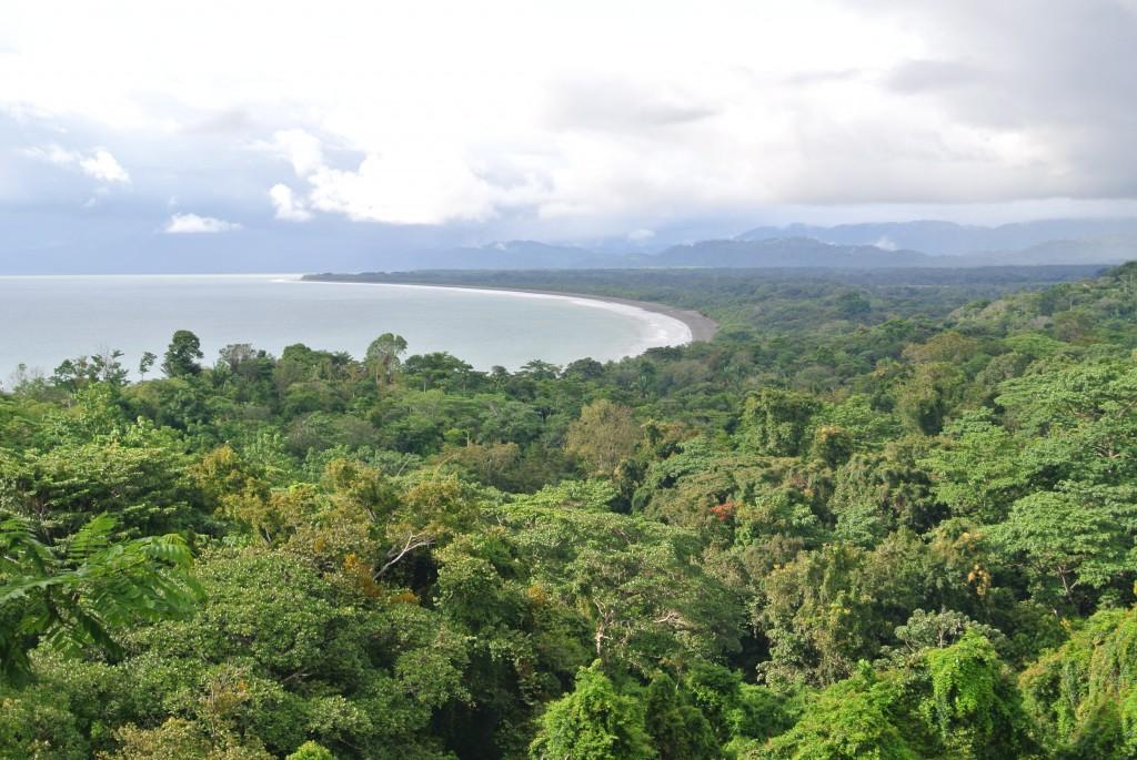 Osa-Peninsula-Costa-Rica-property-costaricarealestateservicePROP-25368.jpg
