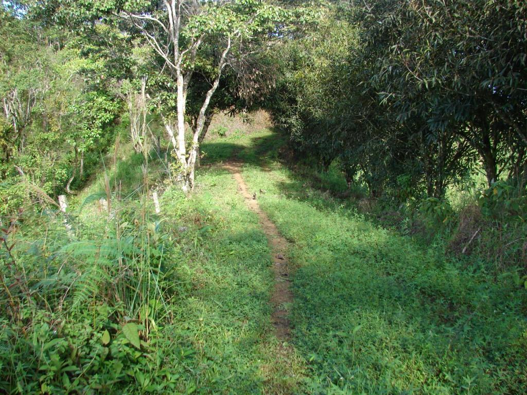 San-Isidro-del-General-Costa-Rica-property-costaricarealestateservicePROP-1166-1.jpg