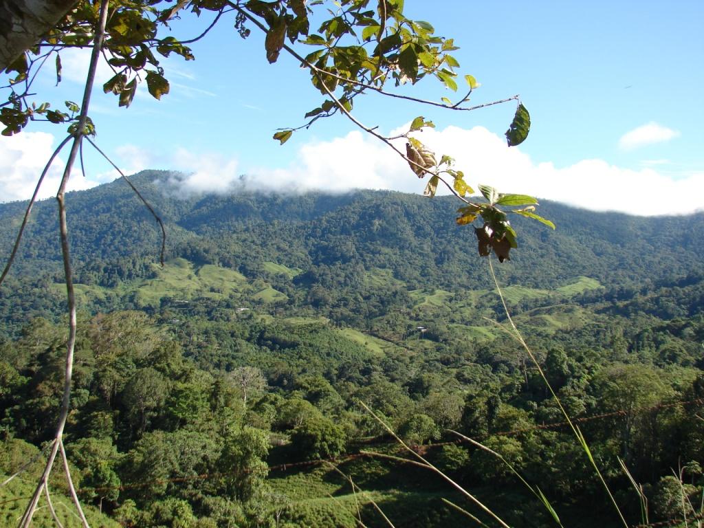 San-Isidro-del-General-Costa-Rica-property-costaricarealestateservicePROP-1166-10.jpg