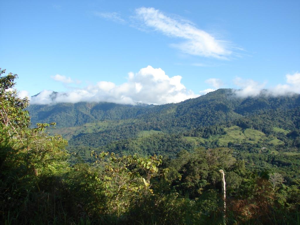 San-Isidro-del-General-Costa-Rica-property-costaricarealestateservicePROP-1166-11.jpg