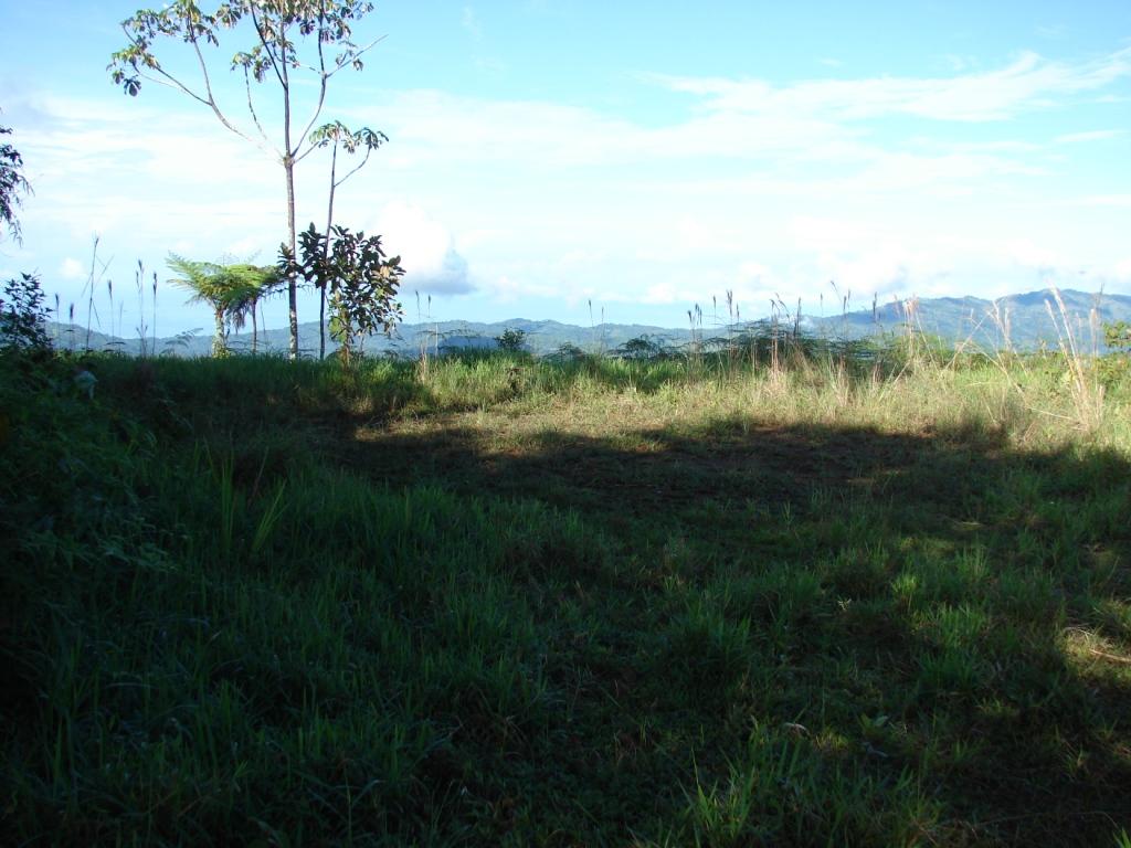 San-Isidro-del-General-Costa-Rica-property-costaricarealestateservicePROP-1166-3.jpg