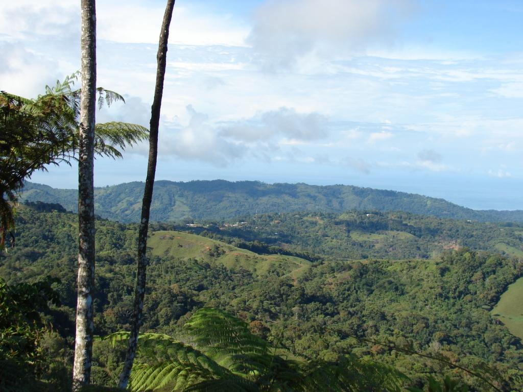 San-Isidro-del-General-Costa-Rica-property-costaricarealestateservicePROP-1166-5.jpg