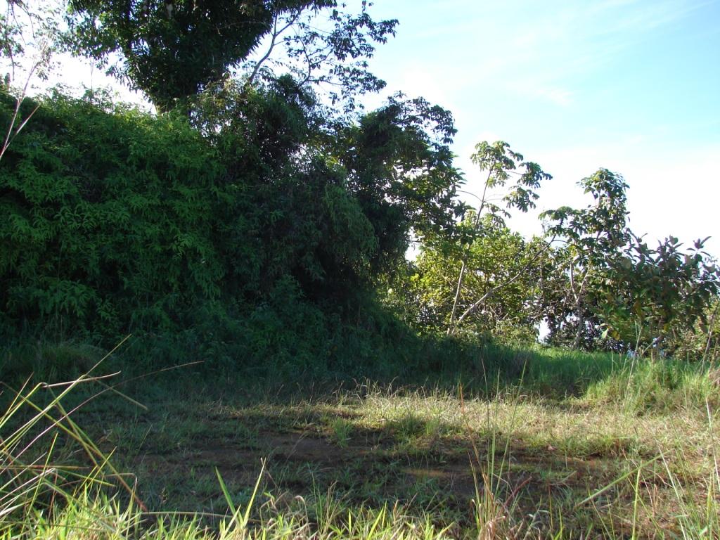 San-Isidro-del-General-Costa-Rica-property-costaricarealestateservicePROP-1166-8.jpg