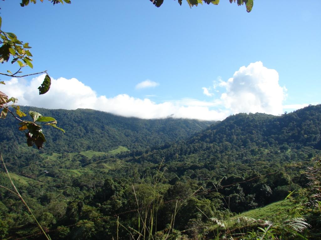 San-Isidro-del-General-Costa-Rica-property-costaricarealestateservicePROP-1166-9.jpg