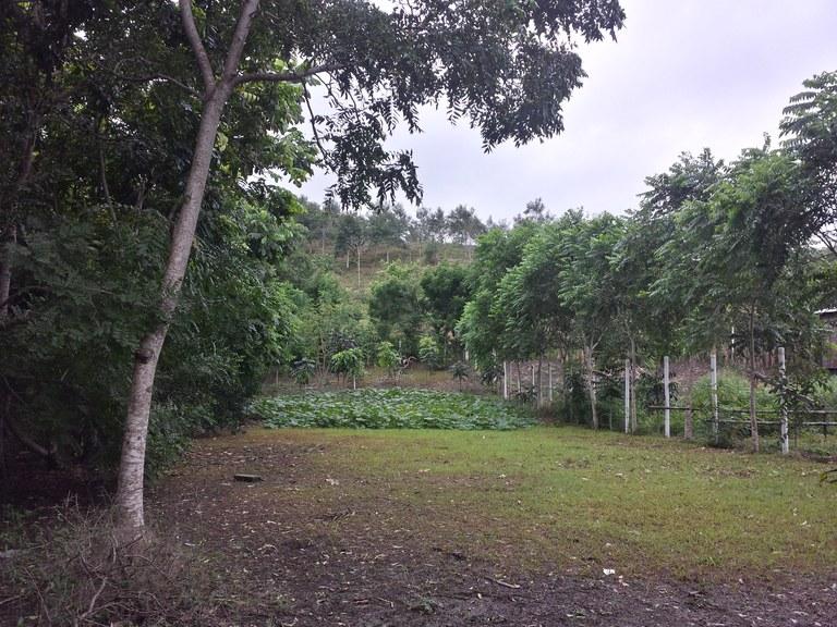 Olón-Ecuador-property-LL1700174.jpg