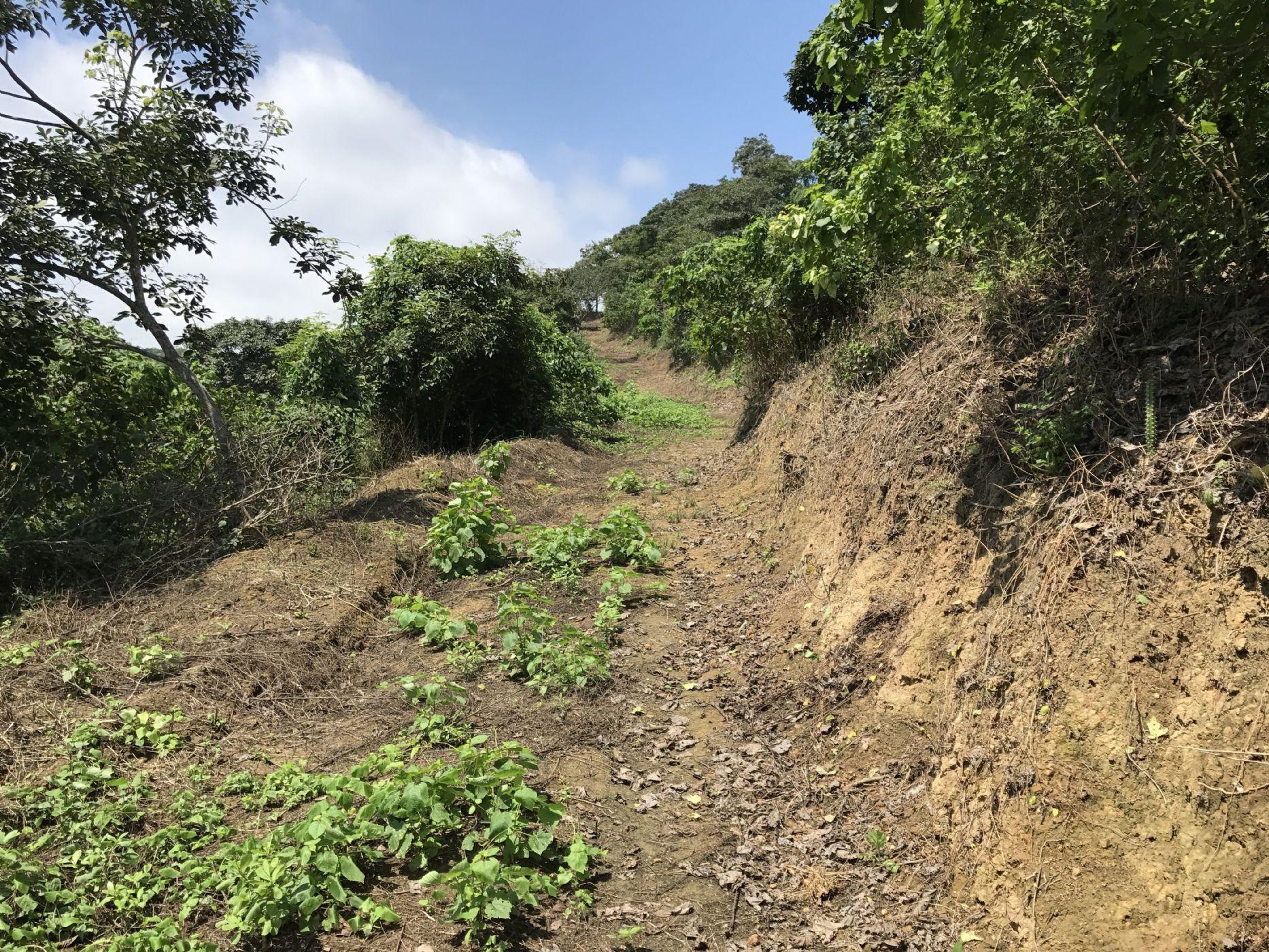 Montañita-Ecuador-property-512587-3.jpg