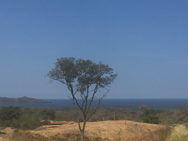 Playa-Flamingo-Costa-Rica-property-dominicalrealty7993.jpg