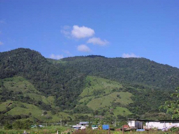 Osa-Peninsula-Costa-Rica-property-costaricarealestateservicePROP-8519-2.jpg