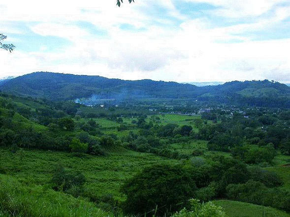 Osa-Peninsula-Costa-Rica-property-costaricarealestateservicePROP-8519-6.jpg