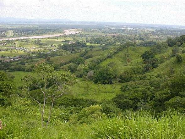 Osa-Peninsula-Costa-Rica-property-costaricarealestateservicePROP-8519-8.jpg