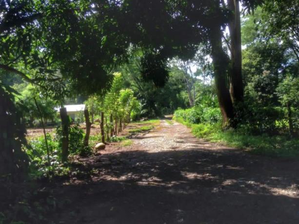 Hatillo-Costa-Rica-property-costaricarealestateHAT085-2.png