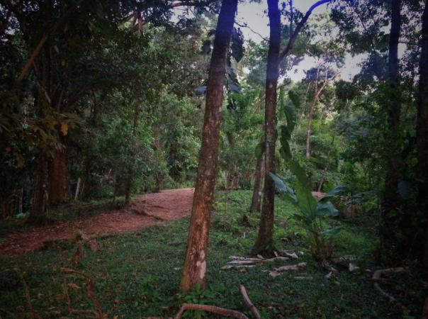Hatillo-Costa-Rica-property-costaricarealestateHAT085-5.png