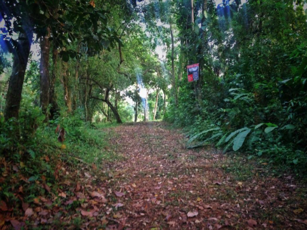 Hatillo-Costa-Rica-property-costaricarealestateHAT085-7.png