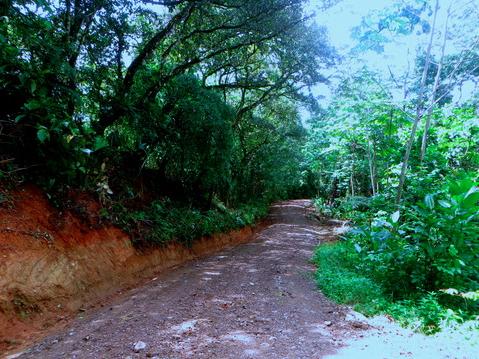 Hatillo-Costa-Rica-property-costaricarealestateHAT085-8.png