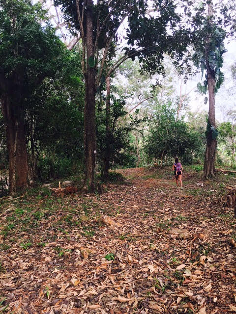 Hatillo-Costa-Rica-property-costaricarealestateHAT085.jpg