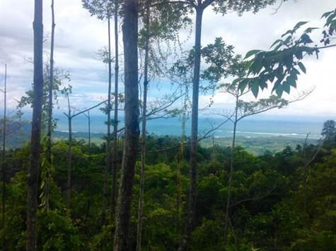 UVITA-Costa-Rica-property-costaricarealestateUVI158-4.jpg
