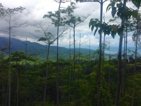 UVITA-Costa-Rica-property-costaricarealestateUVI158-5.jpg