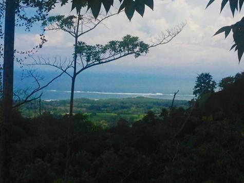 UVITA-Costa-Rica-property-costaricarealestateUVI158-8.jpg