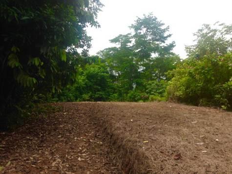 UVITA-Costa-Rica-property-costaricarealestateUVI158.jpg