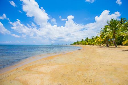 Roatan-Honduras-property-roatanlife1122-1.jpg