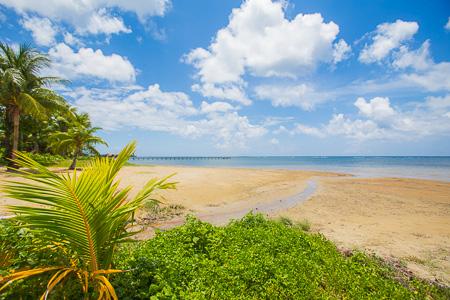 Roatan-Honduras-property-roatanlife1122-2.jpg