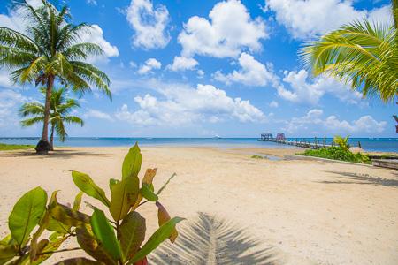 Roatan-Honduras-property-roatanlife1122-3.jpg