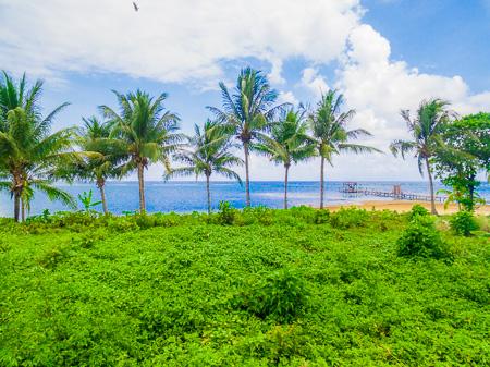 Roatan-Honduras-property-roatanlife1122-5.jpg