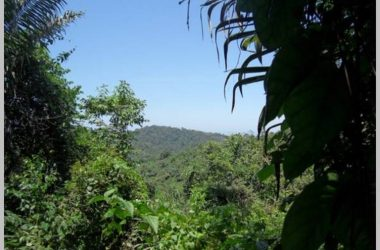 Olon Ecuador - El Pajel in the hills of Olon: Large Acreage for Living your dream in coastal Ecuador