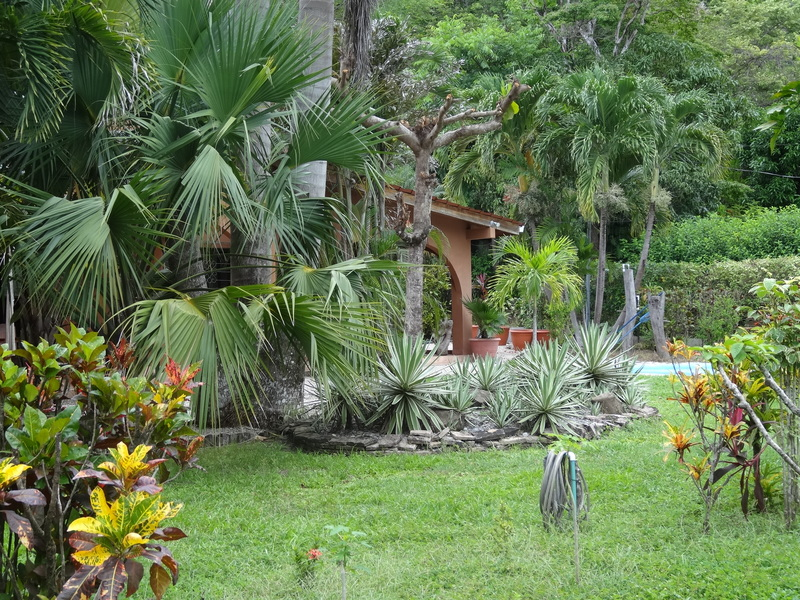 Samara-Costa-Rica-property-dominicalrealty9443-2.JPG