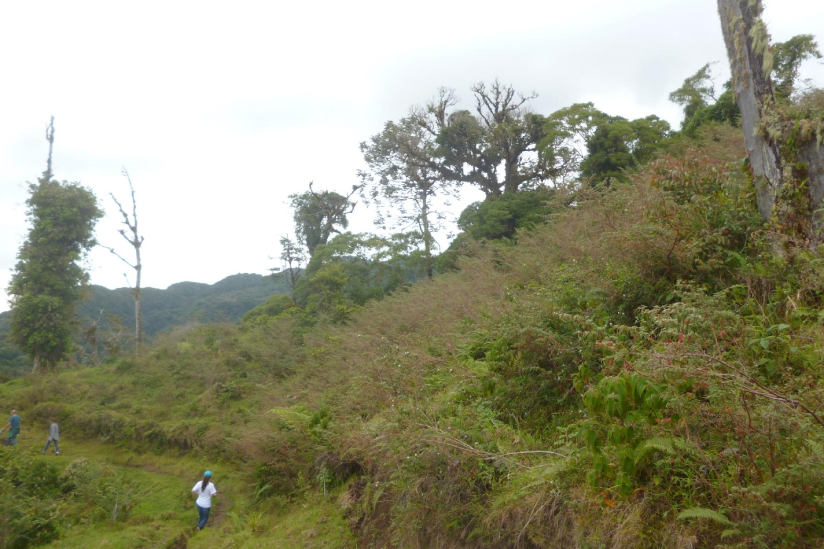 Volcan-Panama-property-panamarealtor9232-4.jpg