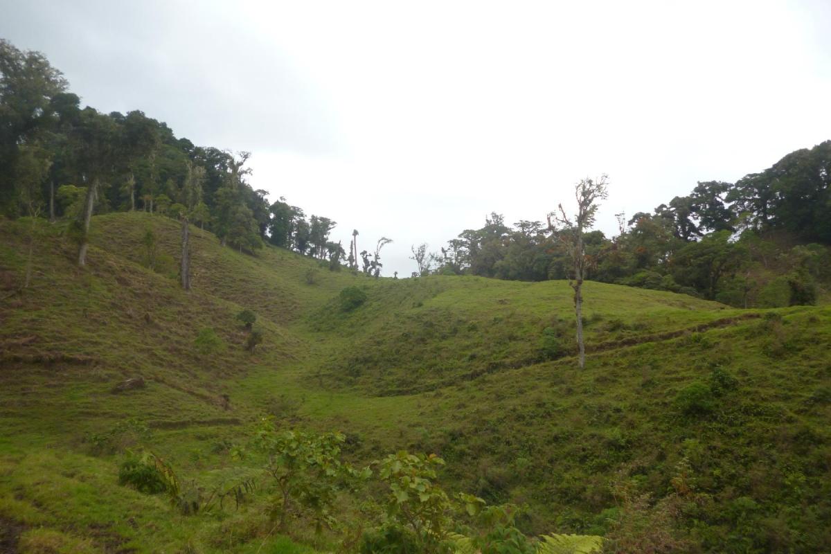 Volcan-Panama-property-panamarealtor9232-5.jpg