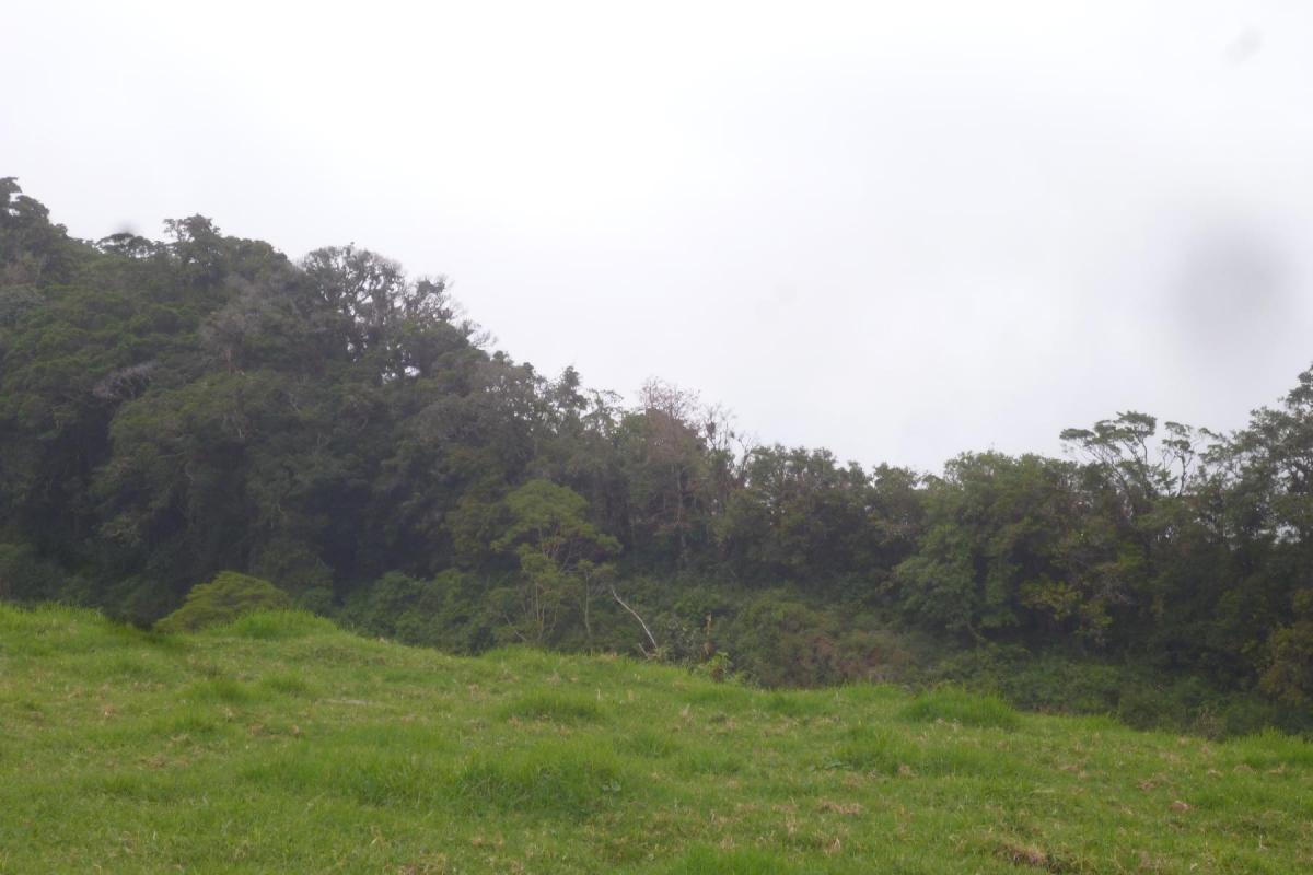 Volcan-Panama-property-panamarealtor9232-6.jpg