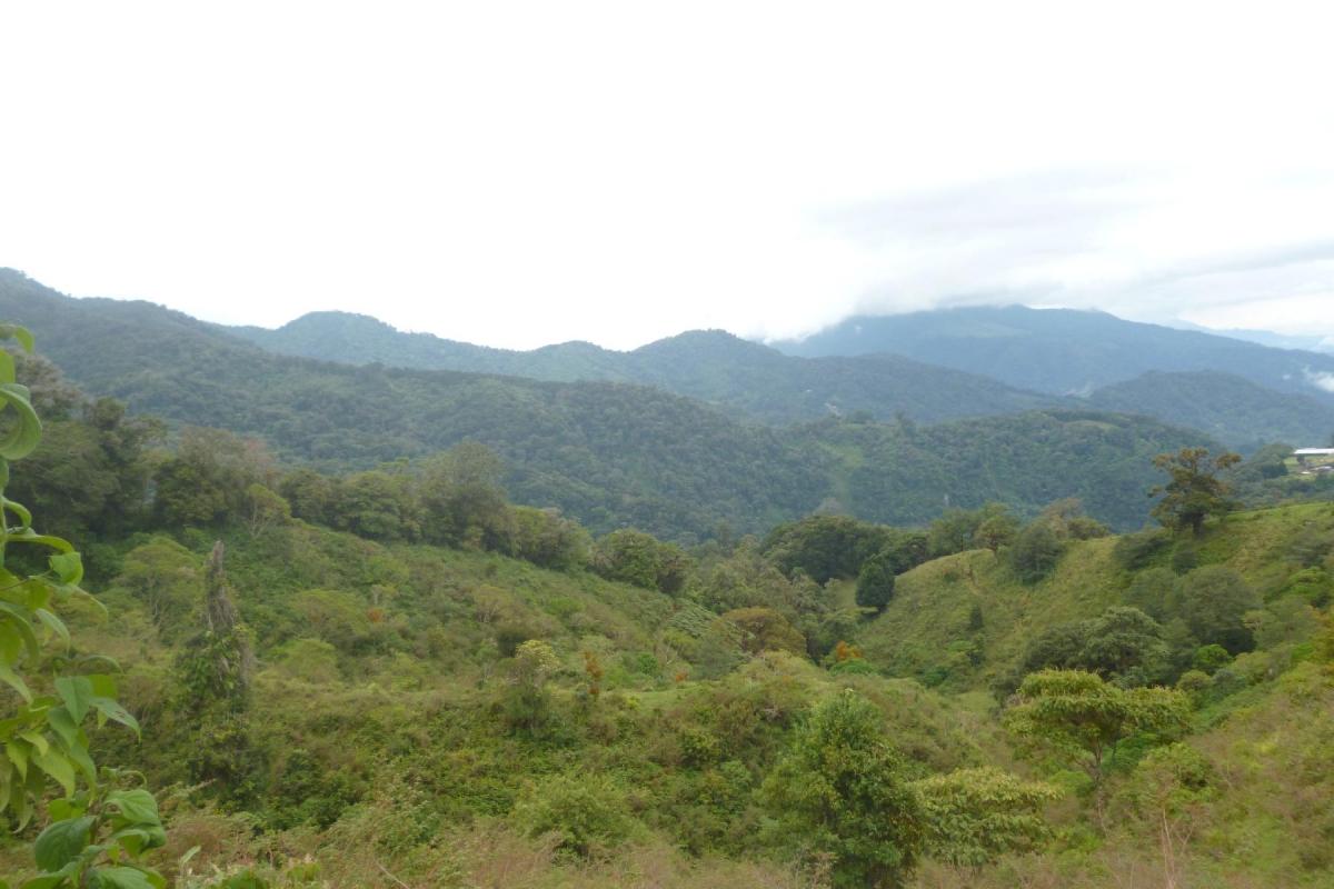 Volcan-Panama-property-panamarealtor9232.jpg