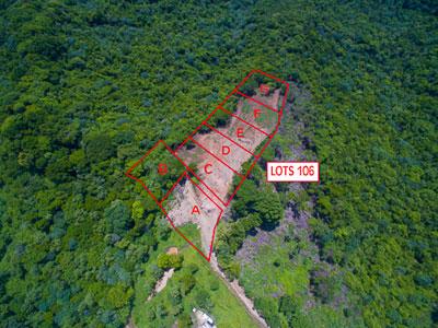 Roatan-Honduras-property-roatanlife1165-1.jpg