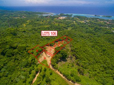 Roatan-Honduras-property-roatanlife1165-2.jpg