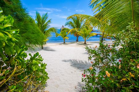 Roatan-Honduras-property-roatanlife1163-7.jpg